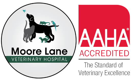 Moore Lane Veterinary Hospital